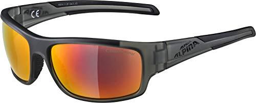 ALPINA TESTIDO Sportbrille, Unisex– Erwachsene, anthracite matt, one size