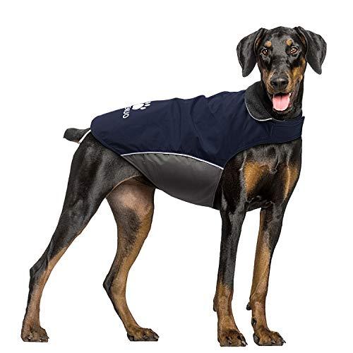 IREENUO Hundemantel Wasserdicht, Hundejacke Winter Winddichte Warme Hunderegenmantel für mittel Grosse große Hunde mit Sicheren Reflexstreifen und Verstellbarer Brust Blau-L